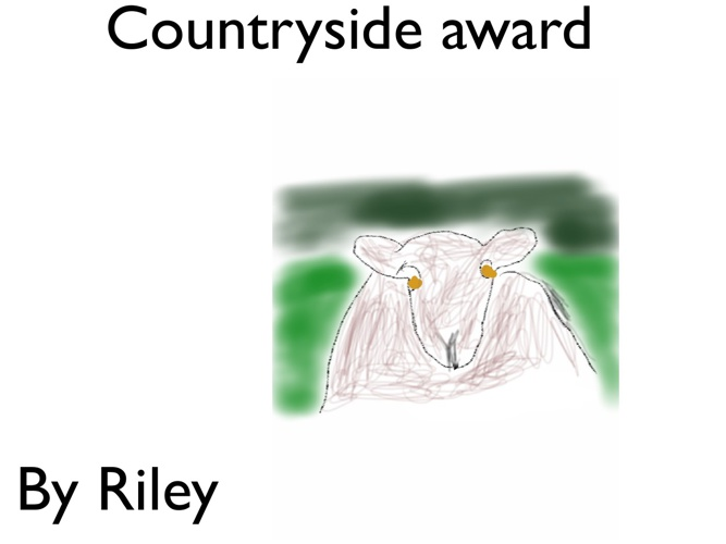 Countryside award riley