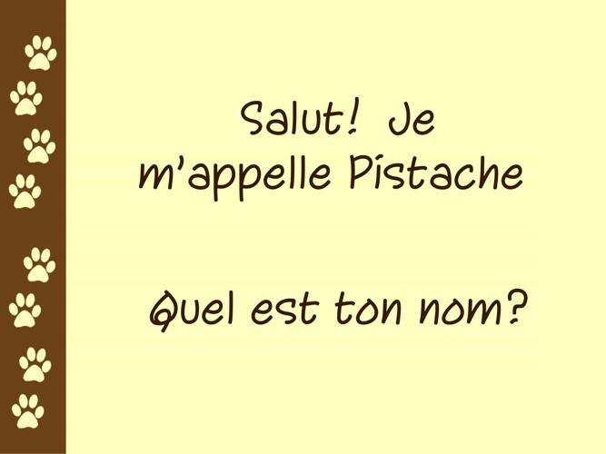 Pistache book French