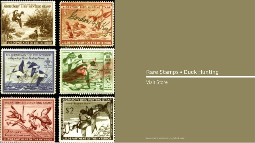Rare Stamps • Duck Hunting