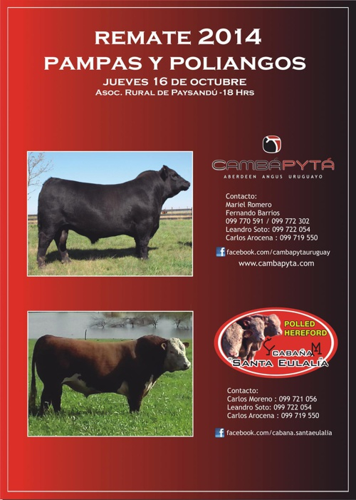 Catálogo Pampas y Poliangos 2014