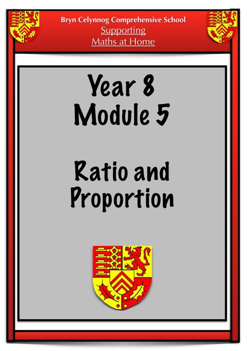 Year 8 Module 5 Booklet PDF