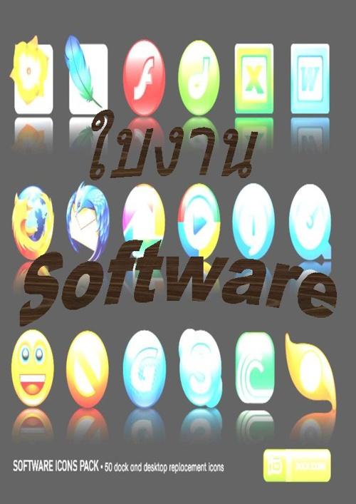 ใบงาน Software