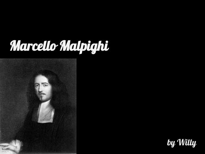 p.5 Cardenas Malpighi