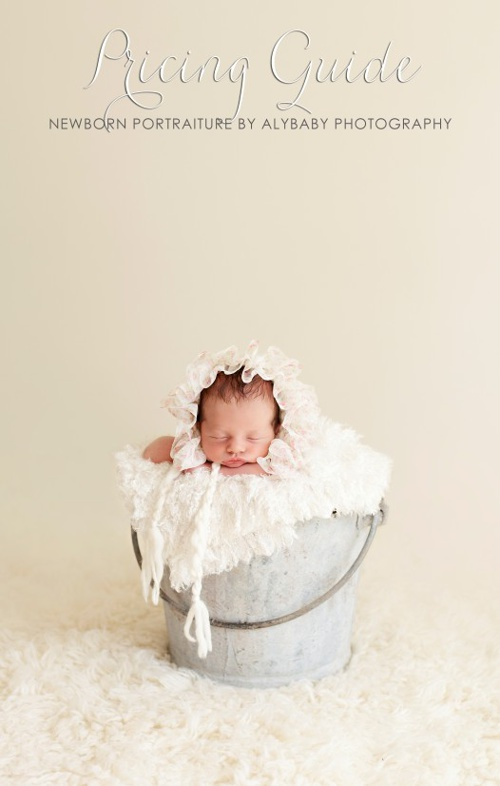 AlyBaby Photography  |  Pricing Guide