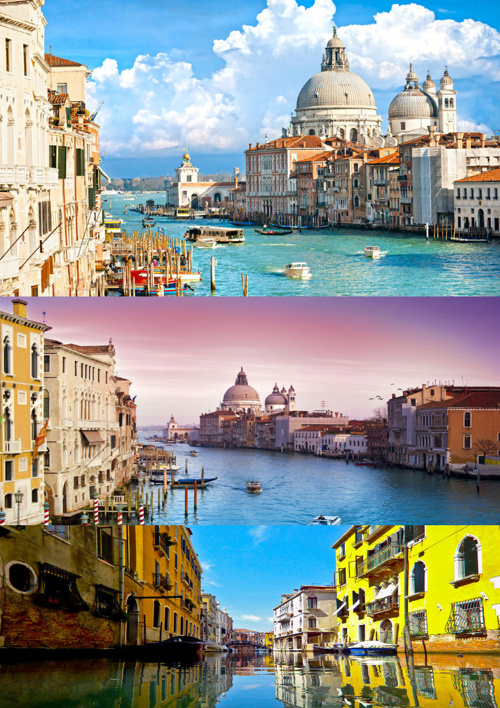 Venice Brochure