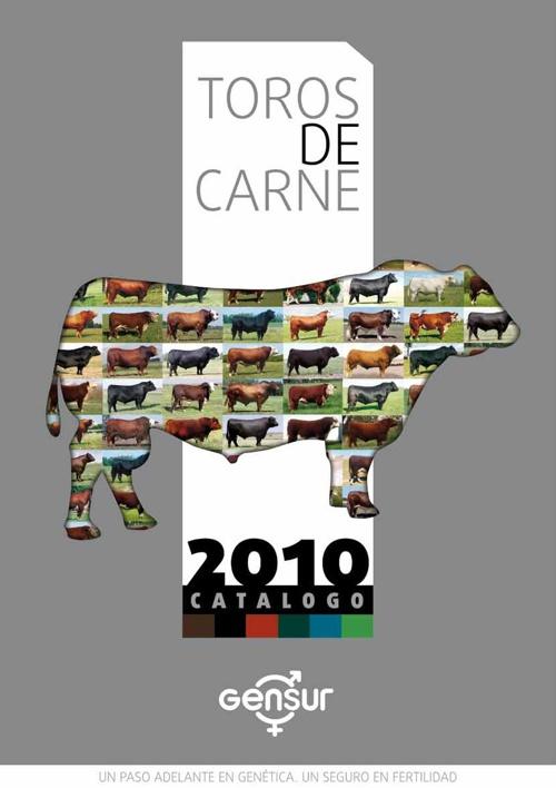 Catalogo Carne Brasil y Argentina 2010