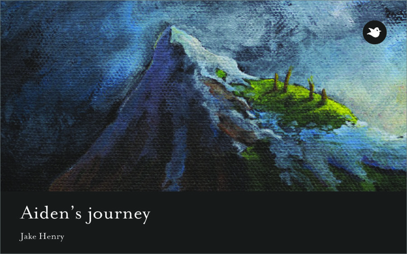 Aiden's Journey