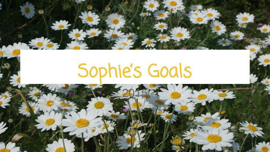 Goal Setting Template (1)