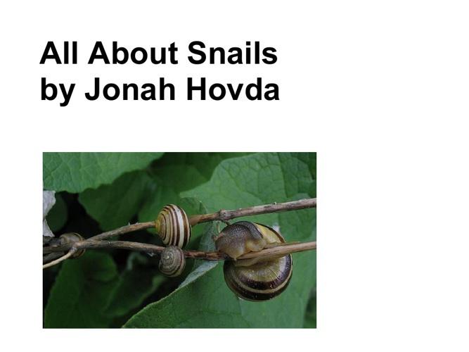 Jonah's snail book