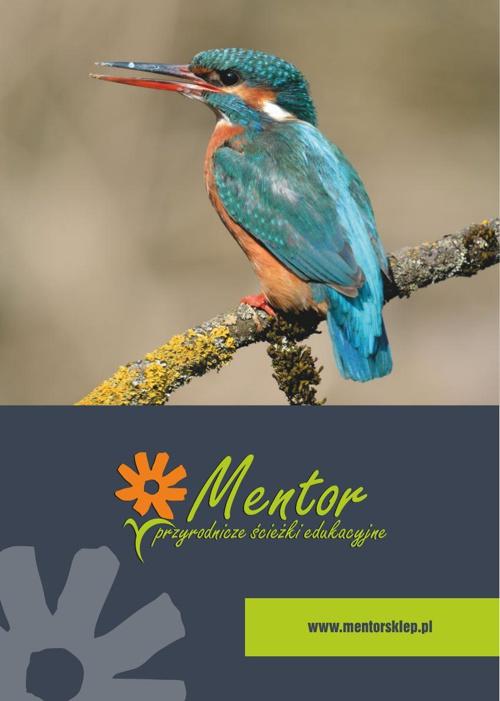Mentor s.c. - Katalog 2014/15