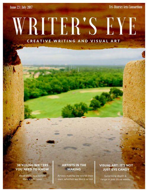Writer's Eye 2017