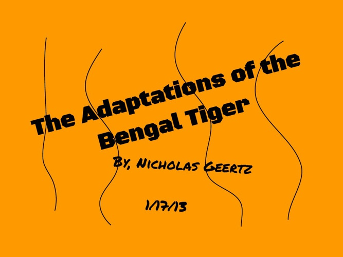 The Adaptations of the Bengal Tiger