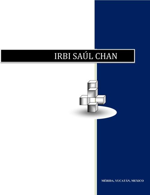 CURRICULUM IRBI SAUL