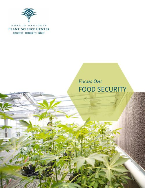 Focus On- Food Security_