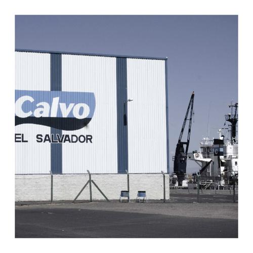 Caso de éxito: CALVO