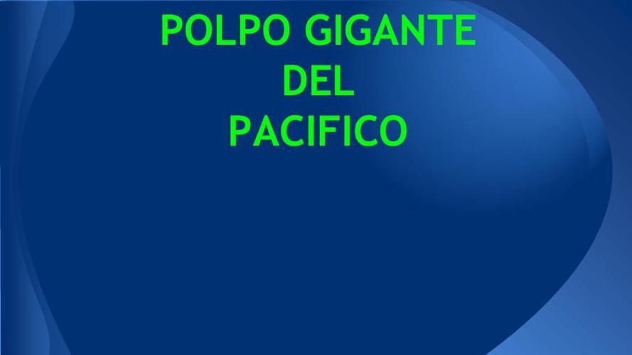 POLPO GIGANTE  OK