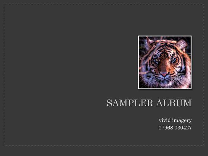 Sampler Album 2015 vivid imagery