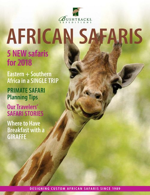 African Safaris July 2017