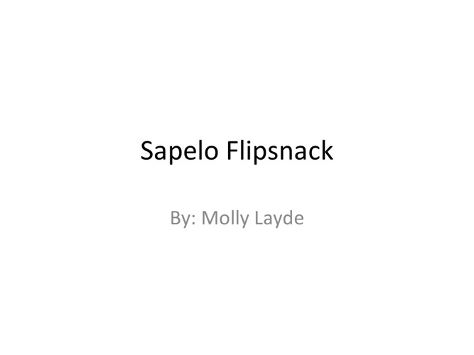 Copy of Sapelo flipsnack