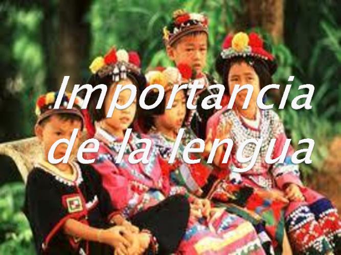 Importancia de las culturas