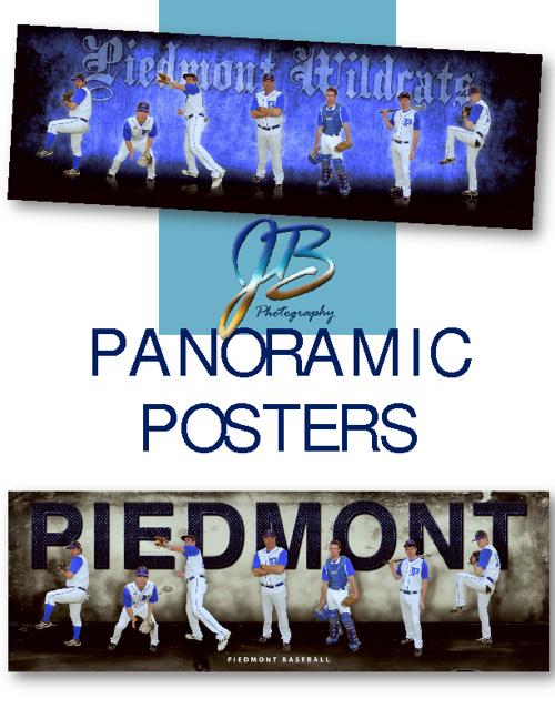 Panoramic Posters