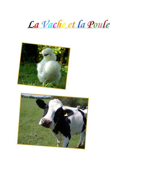 LaPouleetlaVache (3)