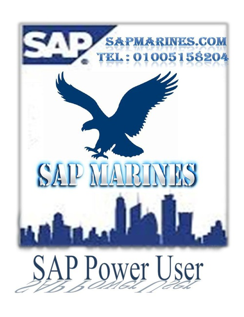 SAP Power User Courses