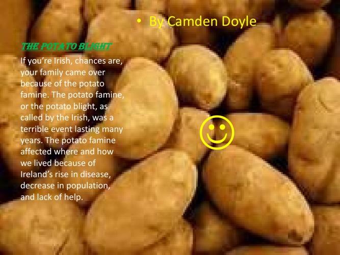 The Potato Blight