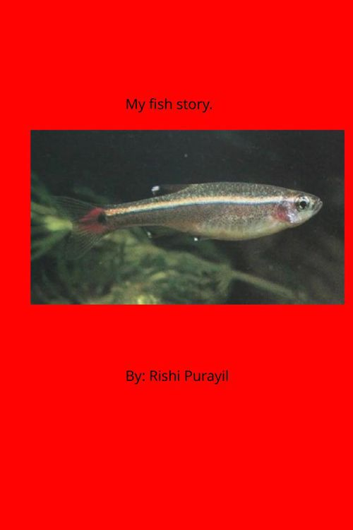 Rishi's Book
