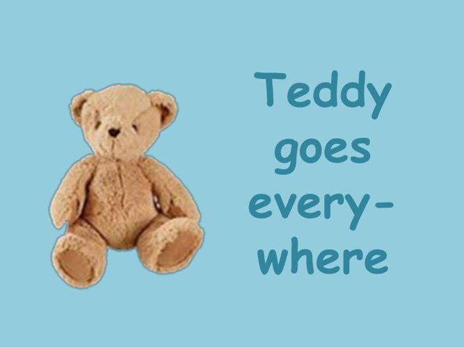Teddy's Adventures