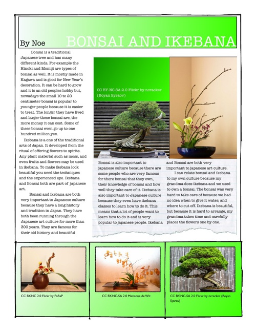Japanese Expert Projects: Bonsai and Ikebana