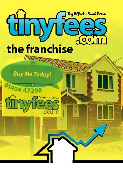 Tinyfees.com Franchisee Information