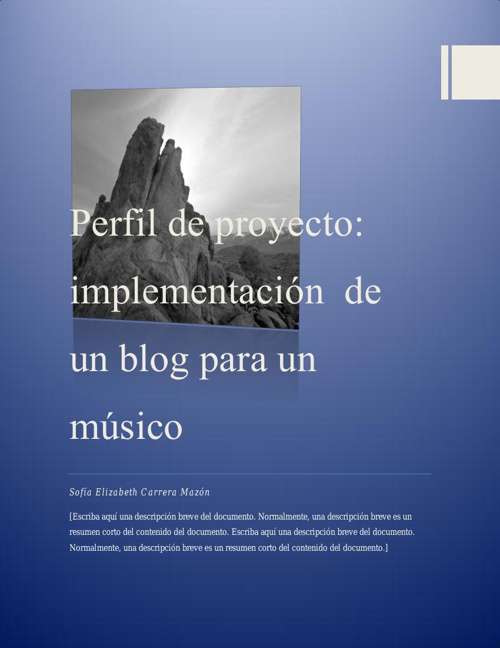 Perfil del Blog