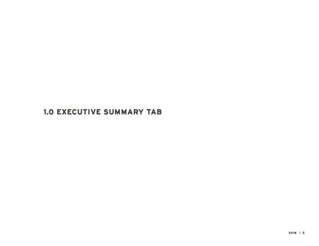 1 Executive Summary