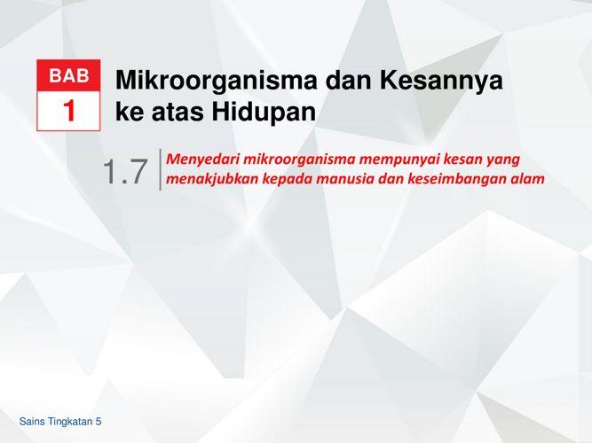MIKROORGANISMA