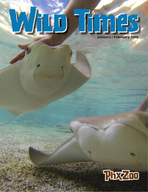 Wild Times January / February 2014