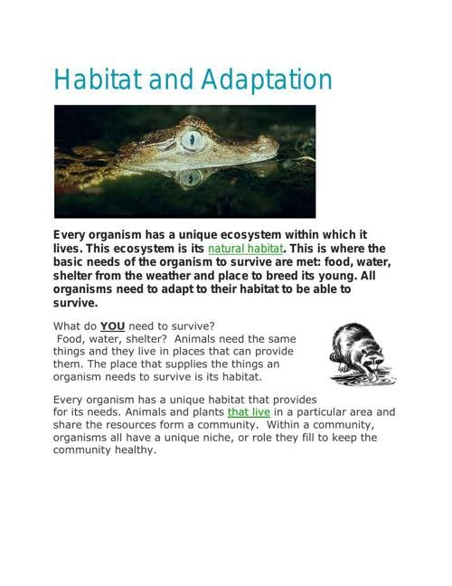 Habitat and Adaptationflipbook