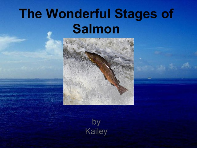 The Wonderful Stages of Salmon