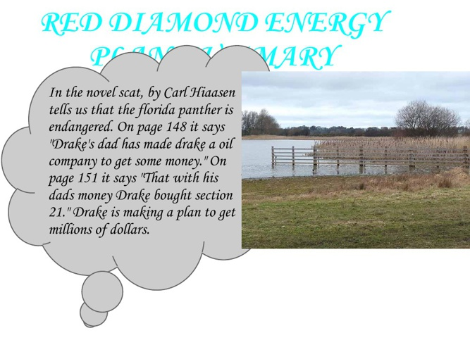 RED DIAMOND ENERGY PLAN SUMMARY BY TOM JUNKER