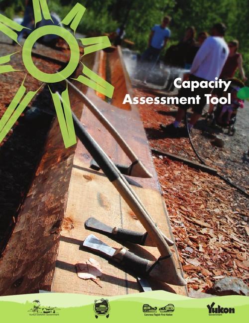 Capacity Assessment Tool