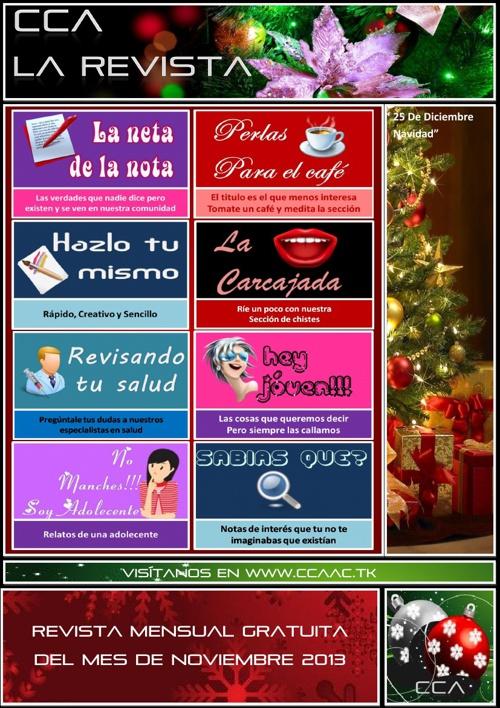 Revista CCA Edicion Diciembre 2013