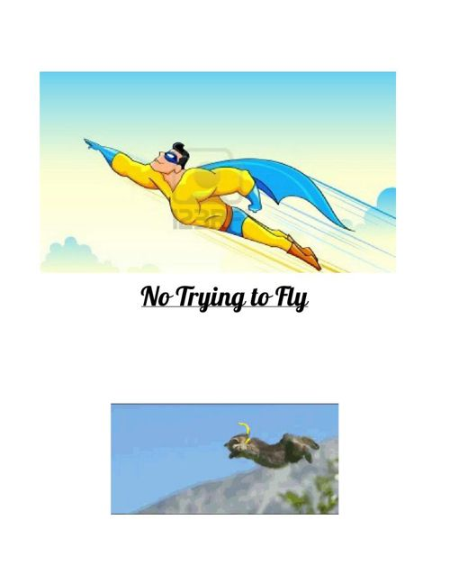 No Flying in Bed