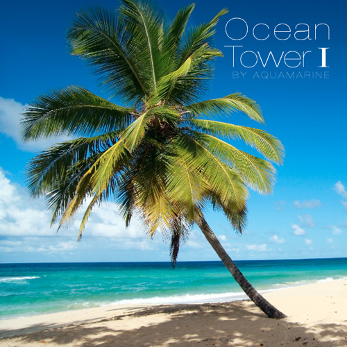 Darin Feldman - Ocean Tower I Branded