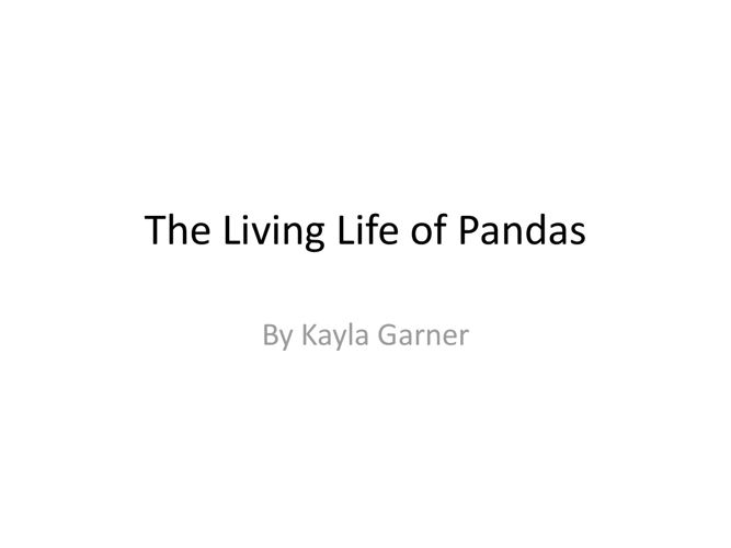 The Living Life of Pandas