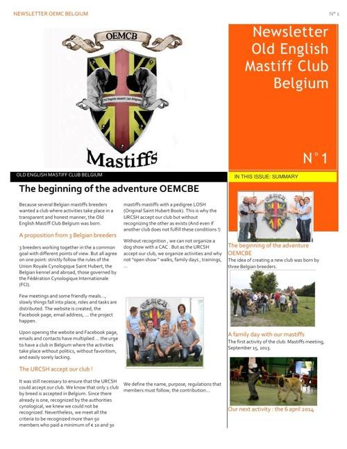 Newsletter OEMCBE Nr1_uk