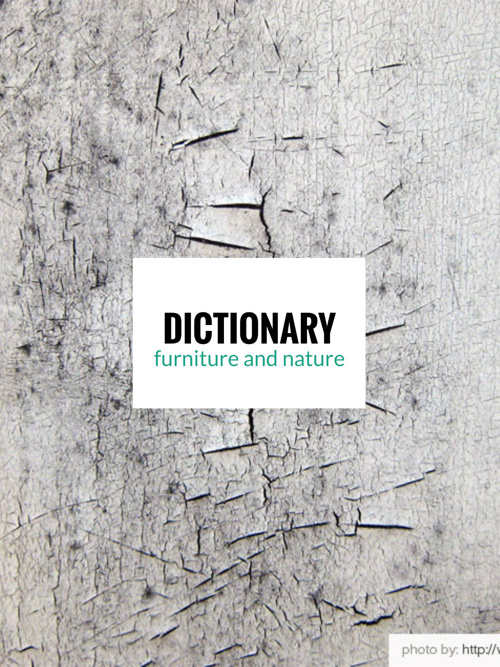 DICTIONARY - furniture and nature
