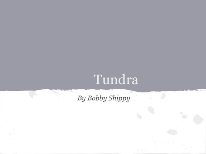 Tundra by Bobby