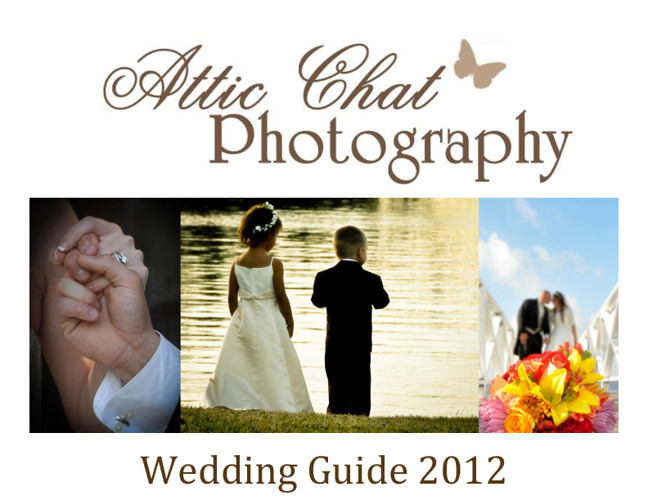 Tami-Wedding 2012