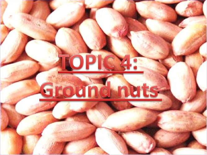CHAPTER 4: Topic 4 (Groundnut)