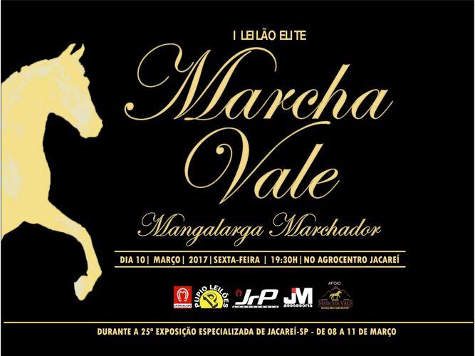 catalogo Elite Marcha Vale - Curva - Final